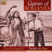 Taraful Din Baia: Gypsies of Romania