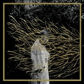 Forest Swords: Engravings [Digipak] *