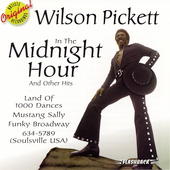 Wilson Pickett: In the Midnight Hour & Other Hits [RHFL]