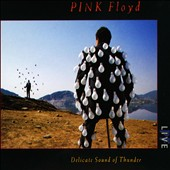 Pink Floyd: Delicate Sound of Thunder [Remastered]