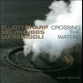 Elliott Sharp/Lucas Niggli/Melvin Gibbs: Crossing the Waters