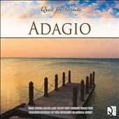 Quest For Serenity: Adagio