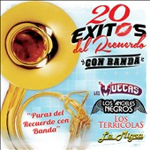 Various Artists: 20 Exitos del Recuerdo: Con Banda