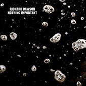 Richard Dawson (Indie Folk): Nothing Important [Digipak] *