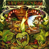 Spyro Gyra: Morning Dance