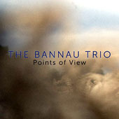 The Bannau Trio: Points of View