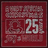 Various Artists: A  Very Special Christmas: 25 Years