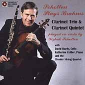 Schotten Plays Brahms