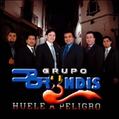 Grupo Bryndis: Huele a Peligro
