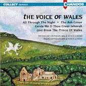 The Voice of Wales / Tredegar & Rhos Orpheus Male Choirs