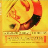 Arias & Cantatas / Wirtz, Basch, Parnassi Musici