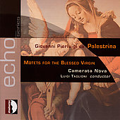 Echo - Palestrina: Motets for the Blessed Virgin / Taglioni
