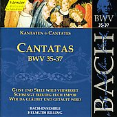 Bach: Cantatas, BWV 35-37