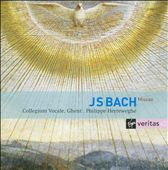 J.S. Bach: Masses BWV 233-235; Sanctus BWV 238