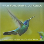 Bach: Brandenburg Concertos / Orchestra of the Antipodes; Walker
