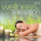 Various Artists: Wellness & Relaxation Music
