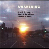 Mark O'Leary (Guitar): Awakening