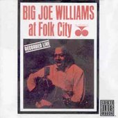 Big Joe Williams: Big Joe Williams at Folk City