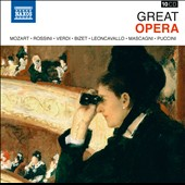 Great Opera - Puccini, Bizet, Verdi, Rossini, Mozart et al. [10 CDs]