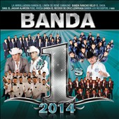 Various Artists: Banda #1s 2014