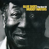 Muddy Waters: Blue Skies: Best of Muddy Waters