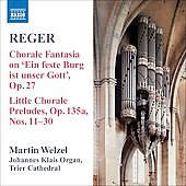 Reger: Organ Works Vol 8 / Martin Welzel