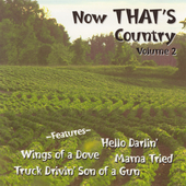 Various Artists: Now That's Country, Vol. 2