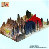 Matt Mitchell (Piano)/Claudia Quintet/John Hollenbeck: What Is the Beautiful? *
