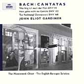 Bach: Trinity Cantatas I / Fuge, Taylor, Gardiner, et al