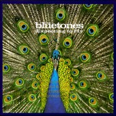 The Bluetones (England): Expecting to Fly