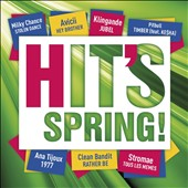 Various Artists: Hit's Spring 2014