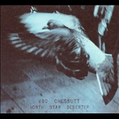 Vic Chesnutt: North Star Deserter