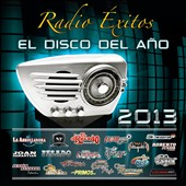 Various Artists: Radio Éxitos: El Disco del Año 2013