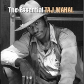 Taj Mahal: The Essential Taj Mahal