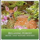 Various Artists: Relaxing Forest