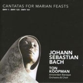 Bach: Cantatas for Marian Feasts / Koopman, York, Agnew, Mertens, et al