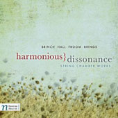 Harmonious Dissonance