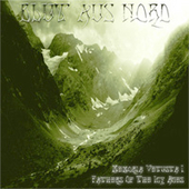 Blut Aus Nord: Memoria Vetusta I: Fathers of the Icy Ages