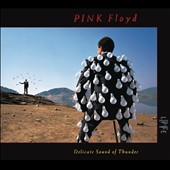 Pink Floyd: Delicate Sound of Thunder [Slipcase]