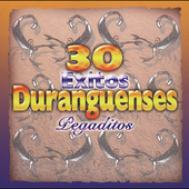 Various Artists: 30 Exitos: Duranguenses Pegaditos
