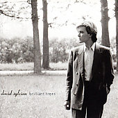 David Sylvian: Brilliant Trees [Limited] [Remaster]
