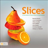 Slices: Cross-Section of Classical Music - Works for Small Ensemble by Burns, Sainsbury, Sundin, Bakker and Beeler