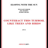 Eloping With the Sun: Counteract This Turmoil Like Trees & Birds [Digipak]