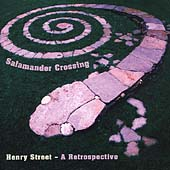 Salamander Crossing: Henry Street *