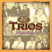 Various Artists: 30 Trios Pegaditos