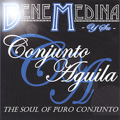 Bene Medina: The Soul of Puro Conjunto