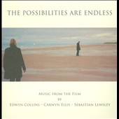 Carwyn Ellis/Edwyn Collins/Sebastian Lewsley: The Possibilities Are Endless [Original Soundtrack]