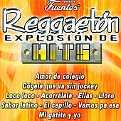Various Artists: Reggaetón: Explosión de Hits