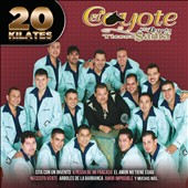 Various Artists: 20 Corridos Bien Perrones