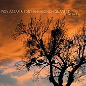 Roy Assaf: Andarta